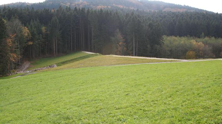 Rückhaltebecken Dirnham - Mattig